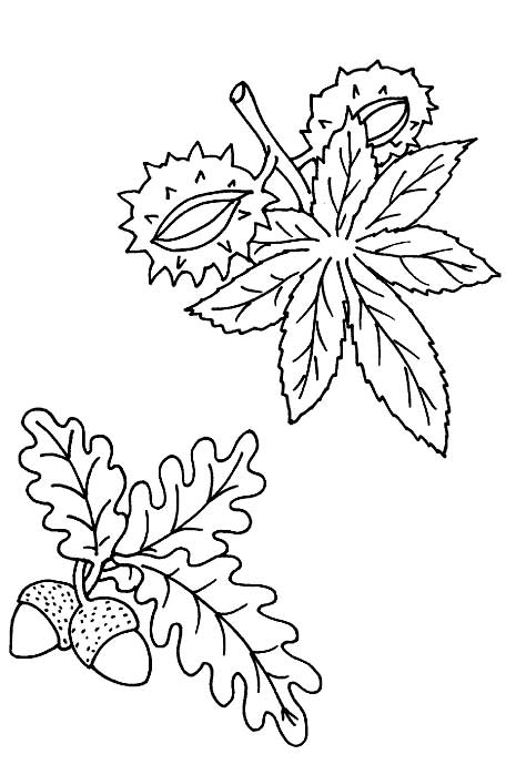 coloring pages with four seasons - photo#3